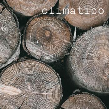 plus-value écologique du bois augmenté
